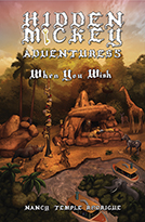 HIDDEN MICKEY ADVENTURES 5: When You Wish - Paperback Edition